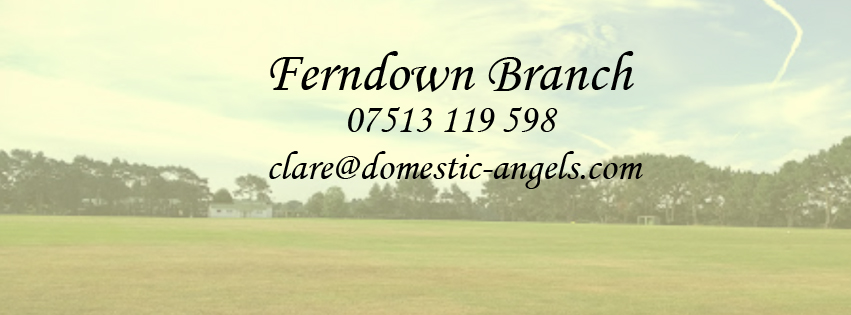 Domestic Angels Ferndown Launched!